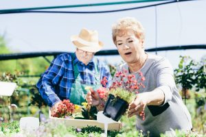 Gardening during lockdown - Home care agency